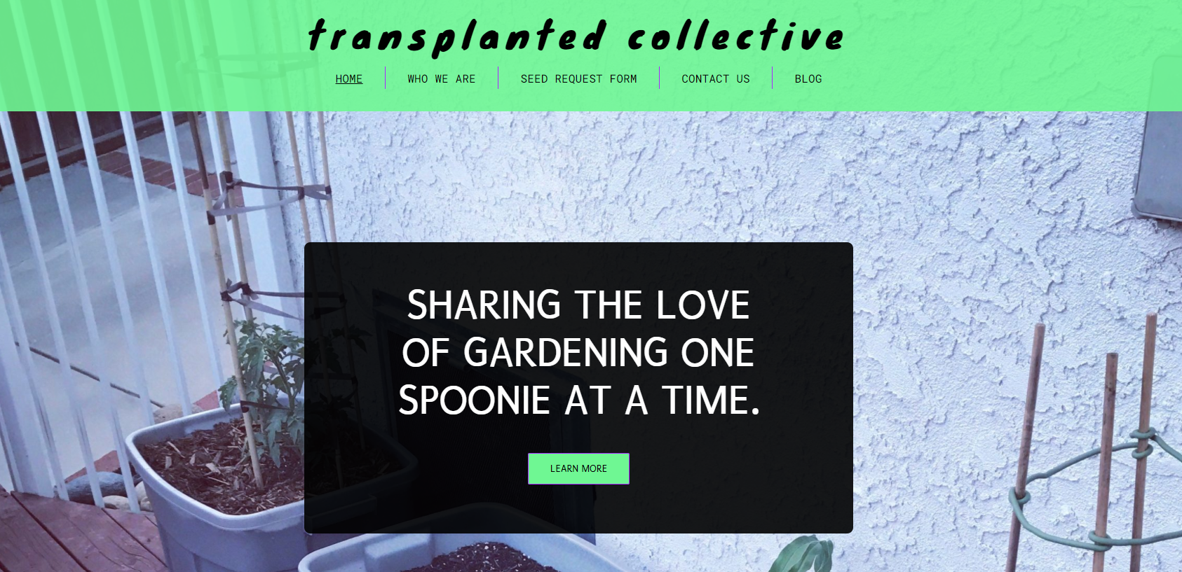 transplanted collective website screenshot that says: Transplanted Collective, Sharing the Love of Gardening One Spoonie at a Time